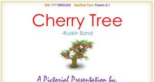 POEM CHERRY TREE
