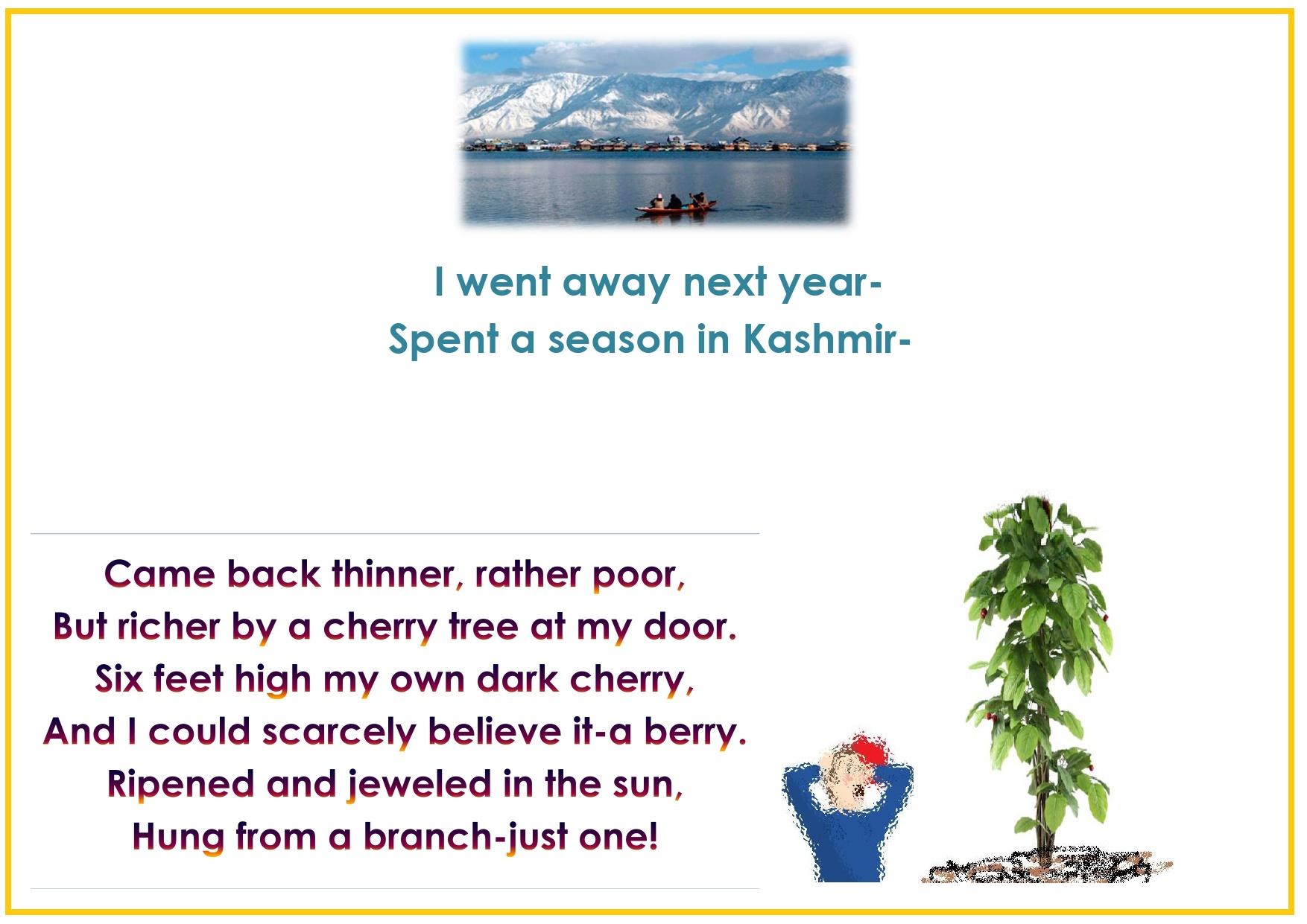 Std.11=Poem-CHERRY TREE-A Pictorial Presentation2_page-0011
