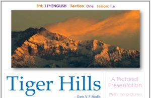 Tiger_hills_Feature Image