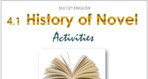 std_12_4.1_history of novel