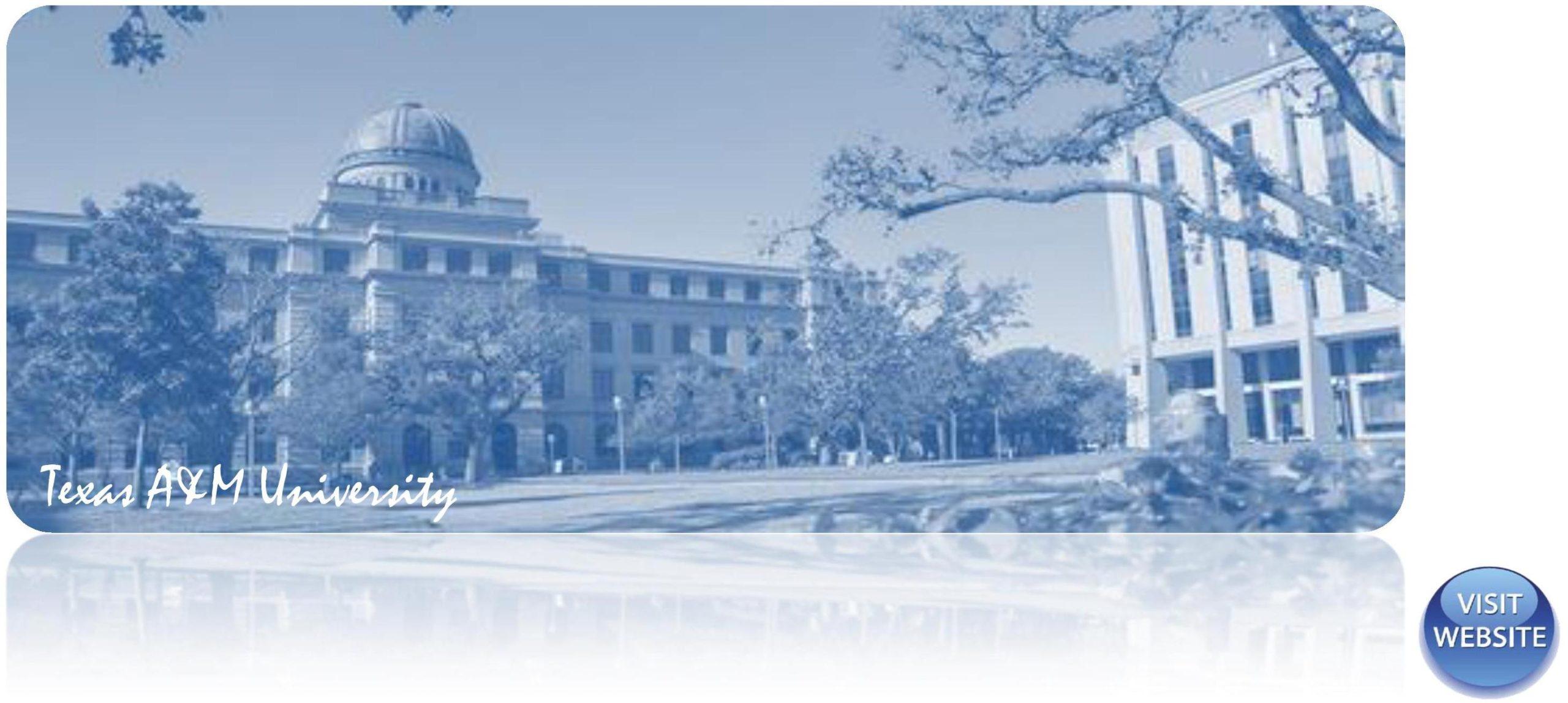 Texas A&M University USA