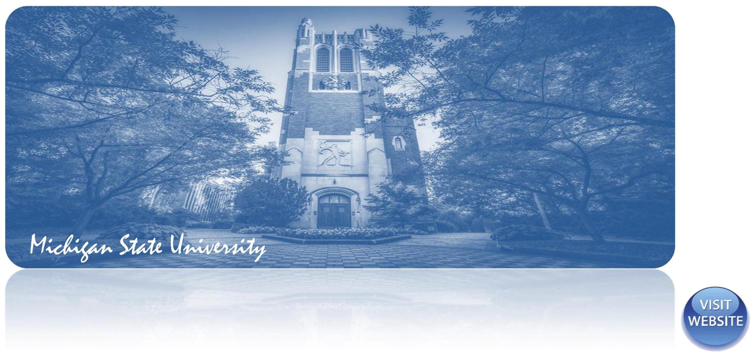 Michigan State University USA